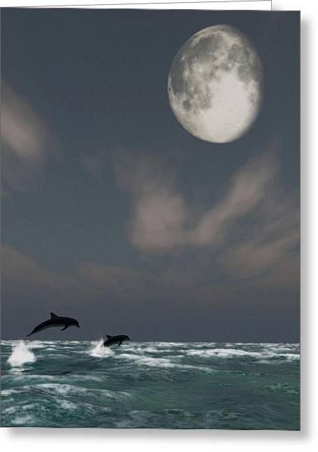 Moonlight Swim Greeting Card by Richard Rizzo