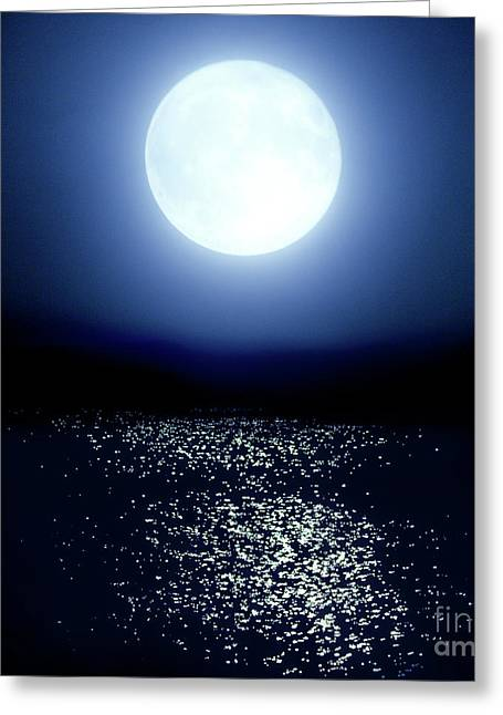 Moonlight Greeting Card by Tatsuya Atarashi