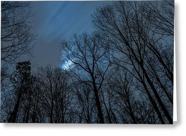 Moonlit Sky Greeting Card
