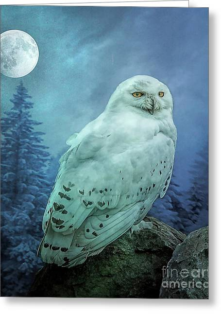 Moonlit Snowy Owl Greeting Card