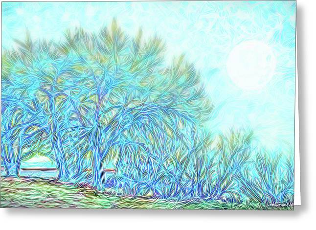 Greeting Card featuring the digital art Moonlit Winter Trees In Blue - Boulder County Colorado by Joel Bruce Wallach
