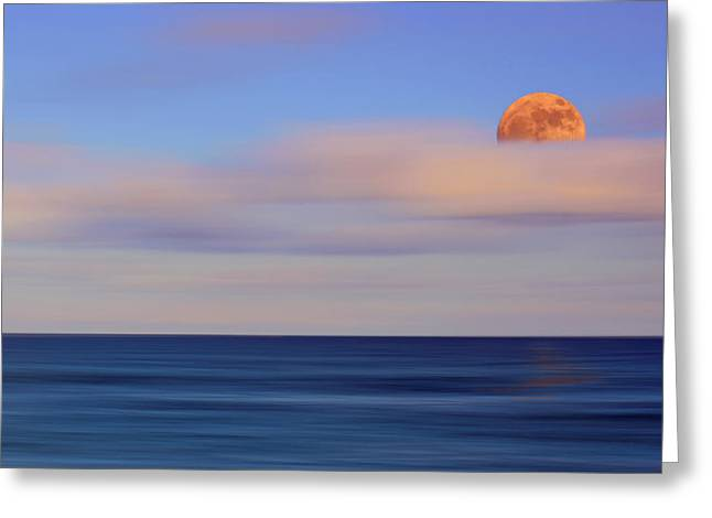 Moonrise Greeting Card by Carol Eade