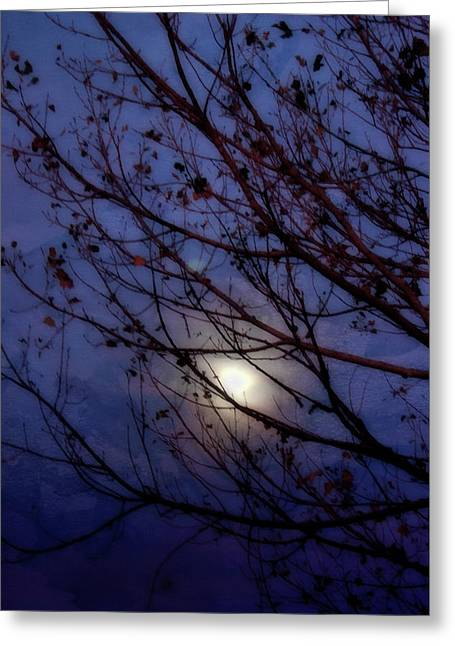 Greeting Card featuring the photograph Moonrise by Ellen Heaverlo