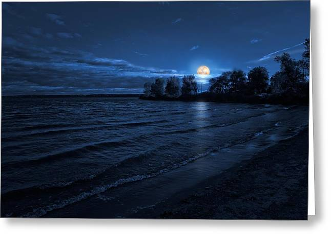 Moonrise On The Beach Greeting Card