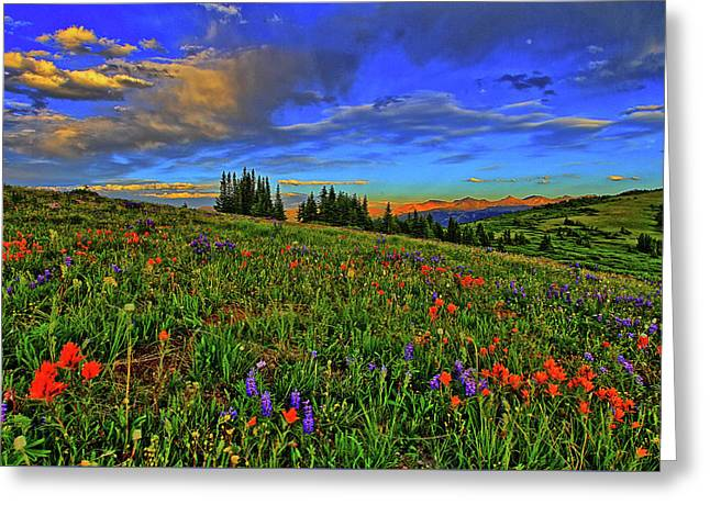 Moonrise Over The Wildflowers Greeting Card
