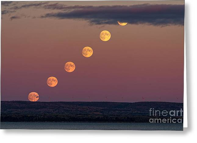 Moonrise Sequence Greeting Card by Colin Woods