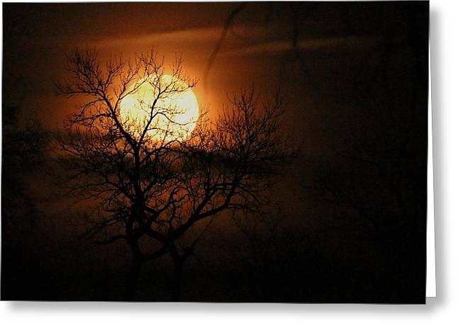 Moonrise Silhouette Greeting Card