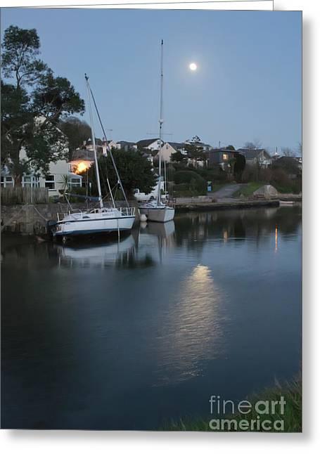 Moonrise Greeting Card by Terri Waters