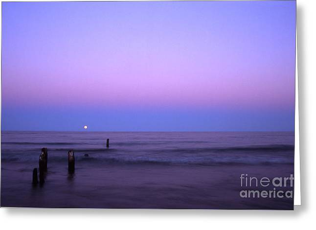 Moonrise Greeting Card