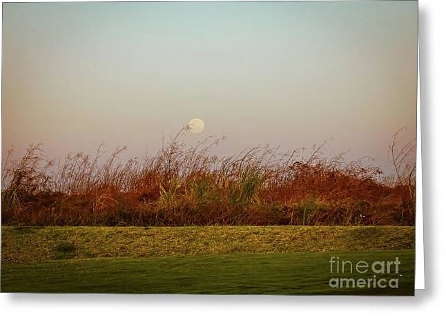 Moonscape Evening Shades Greeting Card
