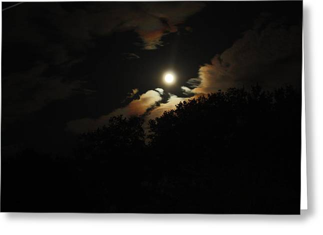 Moonshine Greeting Card by Paula Coley