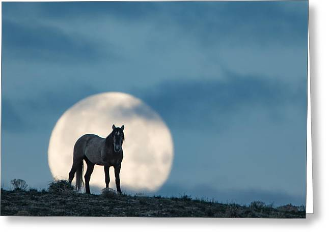 Moonstruck Greeting Card