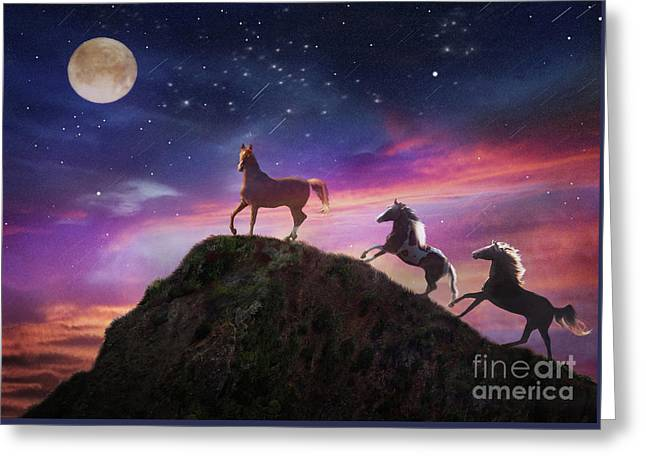 Greeting Card featuring the photograph Moonstruck by Melinda Hughes-Berland