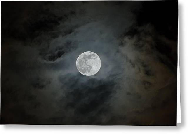 Moonstruck Greeting Card by Rich Leighton