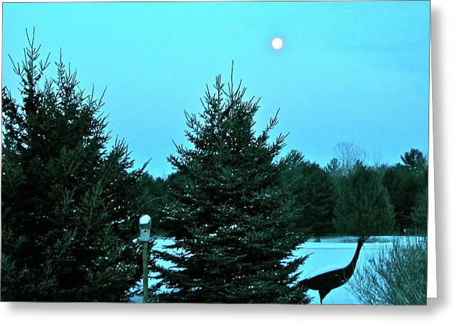 Greeting Card featuring the photograph Moony Blue by Randy Rosenberger