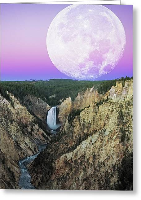 My Purple Dream Greeting Card