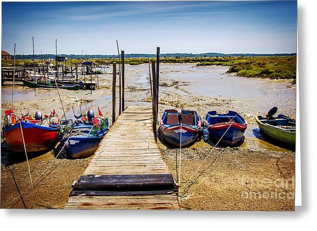 Moored Fishing Boats Greeting Card by Carlos Caetano