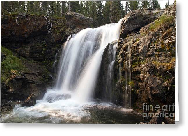 Moose Falls Yellowstone National Park Greeting Card