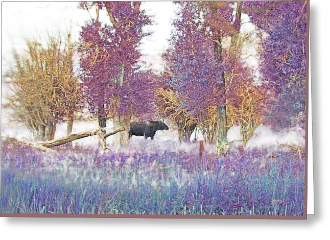 Moose In Pink Forest Greeting Card