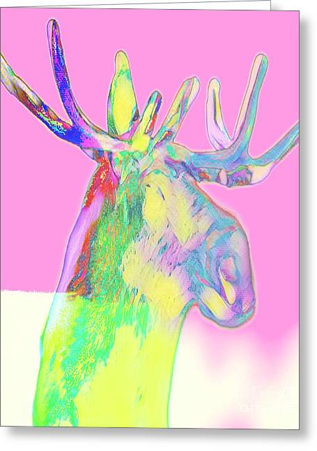 Moosemerized Greeting Card