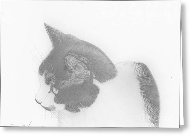 Moozie Cat Drawing Greeting Card