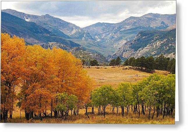 Moraine Park In Rocky Mountain National Park Greeting Card