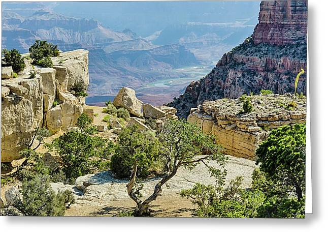 Moran Point View Greeting Card