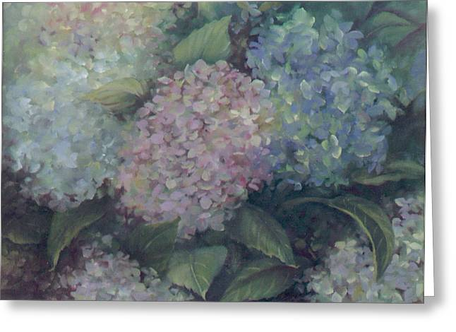 More Hydrangeas Greeting Card