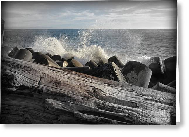 More Logs And Waves Greeting Card by Joy Patzner