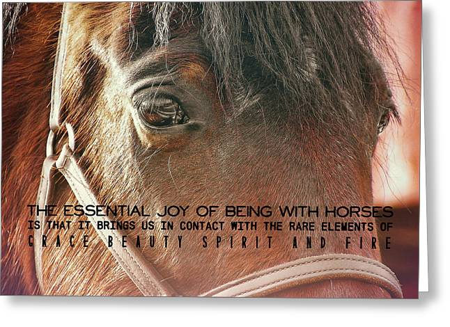 Morgan Horse Quote Greeting Card by JAMART Photography