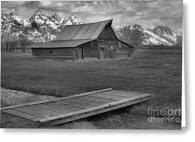 Mormon Row Water Crossing Black And White Greeting Card by Adam Jewell