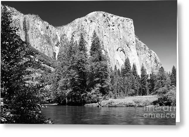Morning At El Capitan Greeting Card by Sandra Bronstein