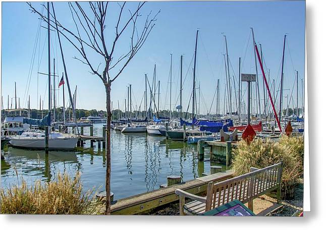 Morning At The Marina Greeting Card