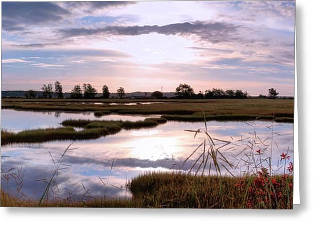 Morning At The Marsh Greeting Card
