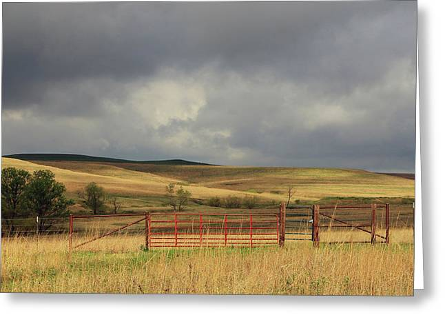 Morning At The Tallgrass Prairie Greeting Card by Christopher McKenzie