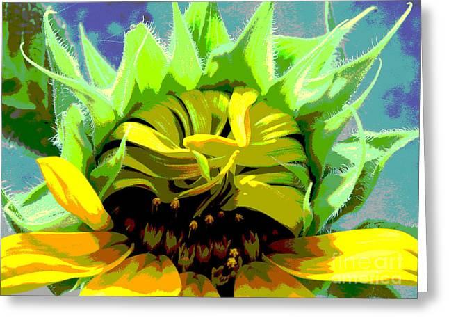 Morning Awakening Greeting Card by Lori Mellen-Pagliaro