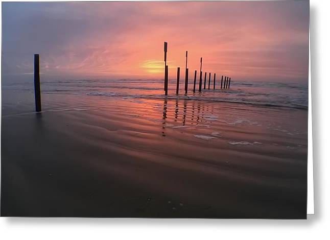 Greeting Card featuring the photograph Morning Bliss by Sharon Jones