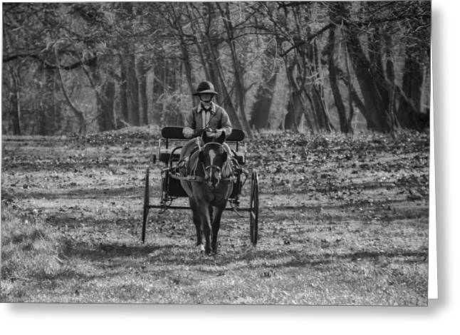 Morning Buggy Ride In Bluebell In Black And White Greeting Card by Bill Cannon