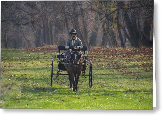 Morning Buggy Ride In Bluebell Pa Greeting Card by Bill Cannon