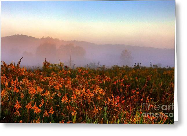 Morning Color-7 Greeting Card by Robert Pearson