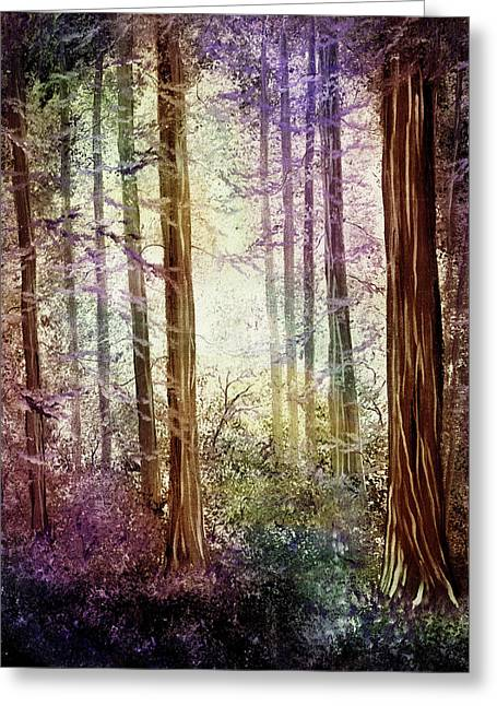 Morning Colors On The Redwoods Greeting Card