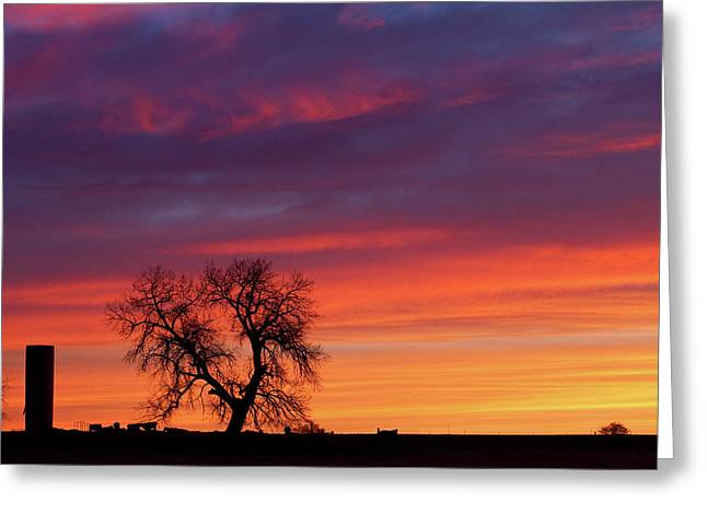 Sunset Prints Greeting Cards - Morning Country Sky Greeting Card by James BO  Insogna