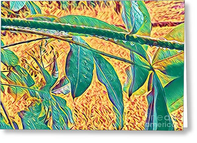 Morning Dew Drops In Puna Greeting Card