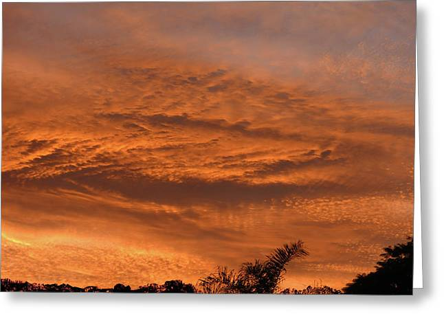 Greeting Card featuring the photograph Morning Flame by Mark Blauhoefer