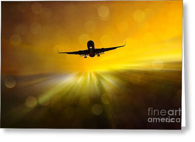 Greeting Card featuring the photograph Morning Flight by Chris Armytage
