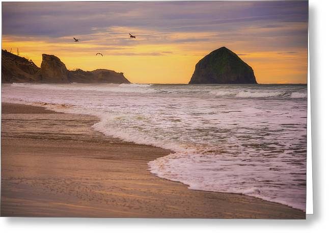 Greeting Card featuring the photograph Morning Flight Over Cape Kiwanda by Darren White