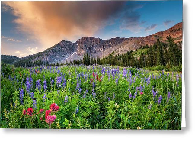 Morning Flowers In Little Cottonwood Canyon, Utah Greeting Card