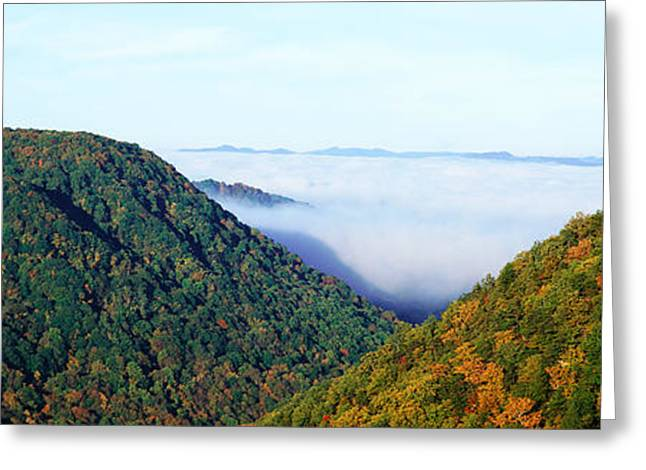Fog Mist Greeting Cards - Morning Fog At Sunrise In Autumn Greeting Card by Panoramic Images