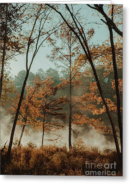 Greeting Card featuring the photograph Morning Fog At The River by Iris Greenwell