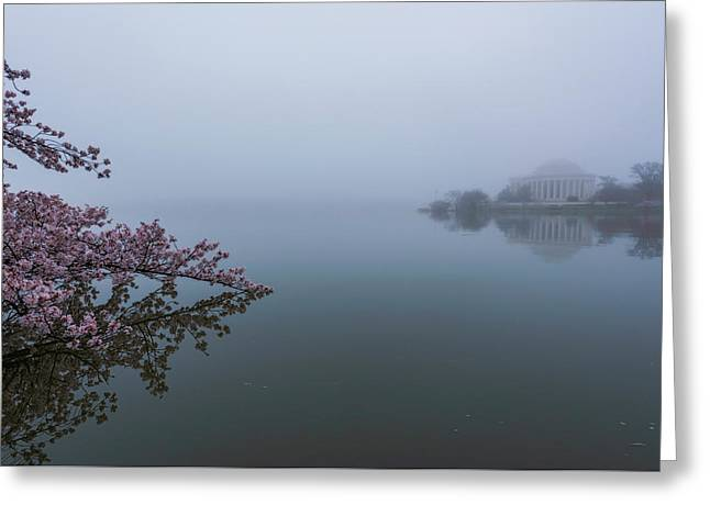 Morning Fog At The Tidal Basin Greeting Card by Michael Donahue